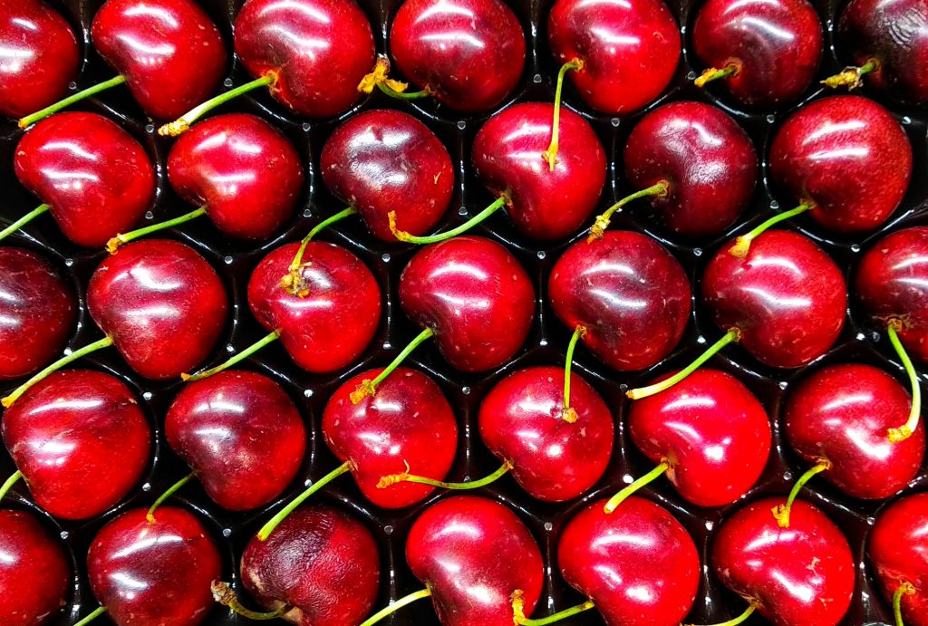 fresh juicy cherries